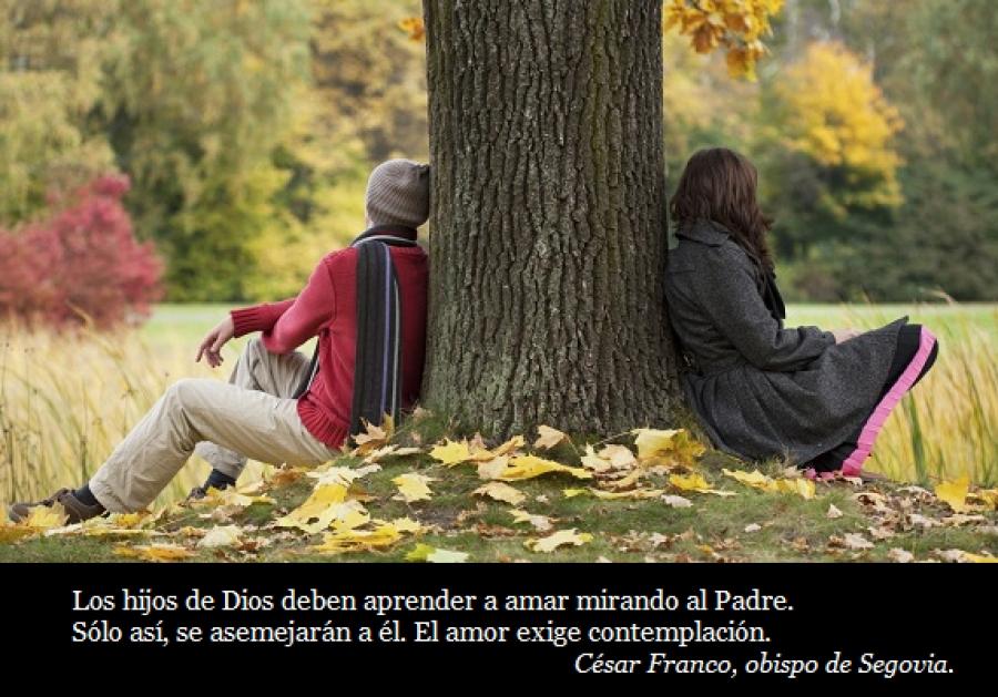 Domingo VIII (A): Amar a los enemigos.