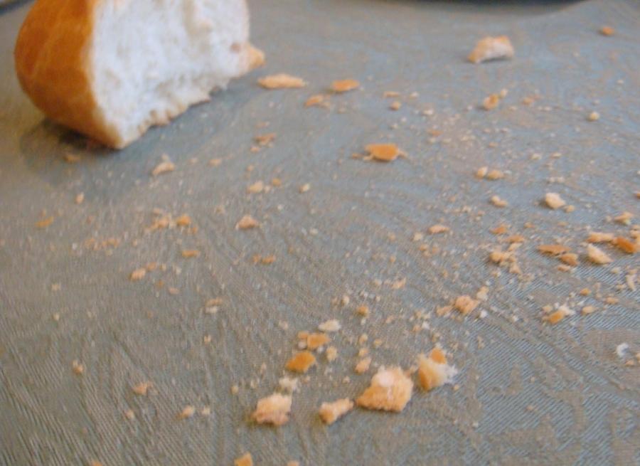XX Domingo del TO (A): Migajas de pan
